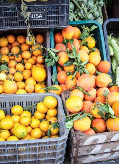 blomster - frukt-p5050090